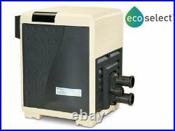 BRAND NEW Pentair MasterTemp 250K BTU 460732 Natural Gas Pool and Spa Heater